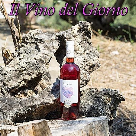 Ecce Vinum, IGP Paestum Rosato della Tenuta Massanova di Perdifumo (SA)