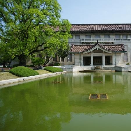 Il MANN in Giappone con la mostra Pompeii dal 14 gennaio 2022/ In rete con il paese del Sol Levante: The Asahi Shimbun tra i finanziatori del restauro del Mosaico di Alessandro