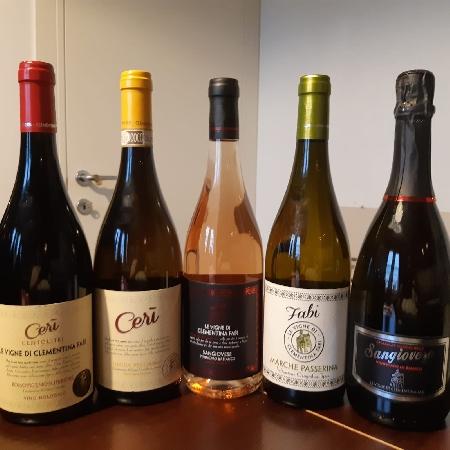 Le Vigne di Clementina Fabi Sangiovese Metodo Charmat Lungo BRUT vinificato in bianco