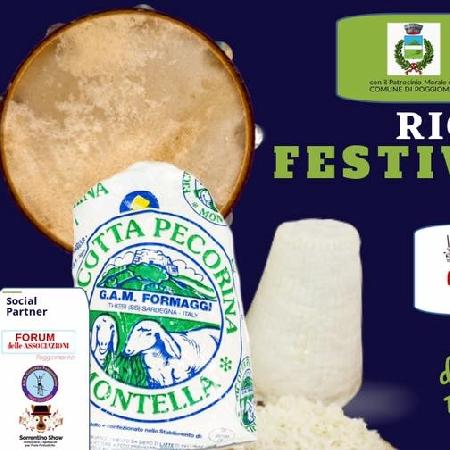 Ricotta Folk, Festival and Sound