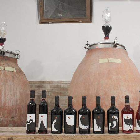 Vini  -Linea completa